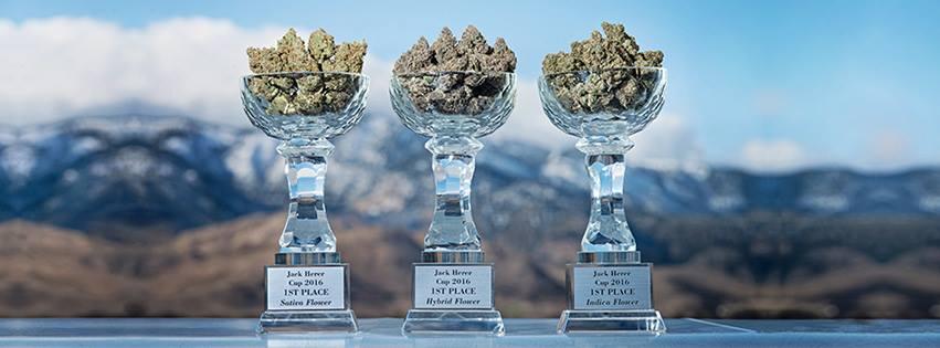 tahoe-hydroponics